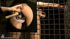 She fingers, fists, and sticks a toy up the slave in the cage's ass