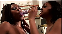 Two busty black beauties relish the taste of their pussies all over the sex toy