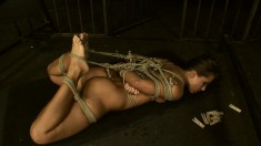 Uninhibited Sandra begs her mistress to punish her as a slave