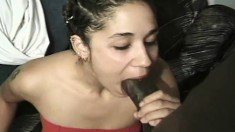 Cute Latina eats a big black dick and has it thrust into her wet hole