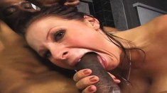 Buxom Gianna gets her slit drilled rough and creampied by a black bull
