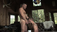Two horny macho men slurp cocks and assholes and have anal sex in the living room