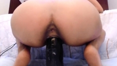 Latina riding BBC dildo