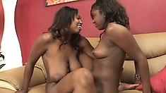 Busty caramel babe Amile pleases her lustful lesbian friend with a strap-on dildo