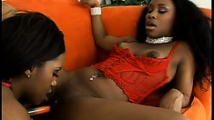 Black pussy-loving sluts drill each other with exciting toys