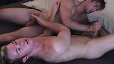 Hot gay lovers exchange blowjobs and engage in passionate anal sex